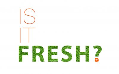 Is Your Content Fresh?